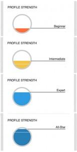linkedin-profile-strength-meter-153x300