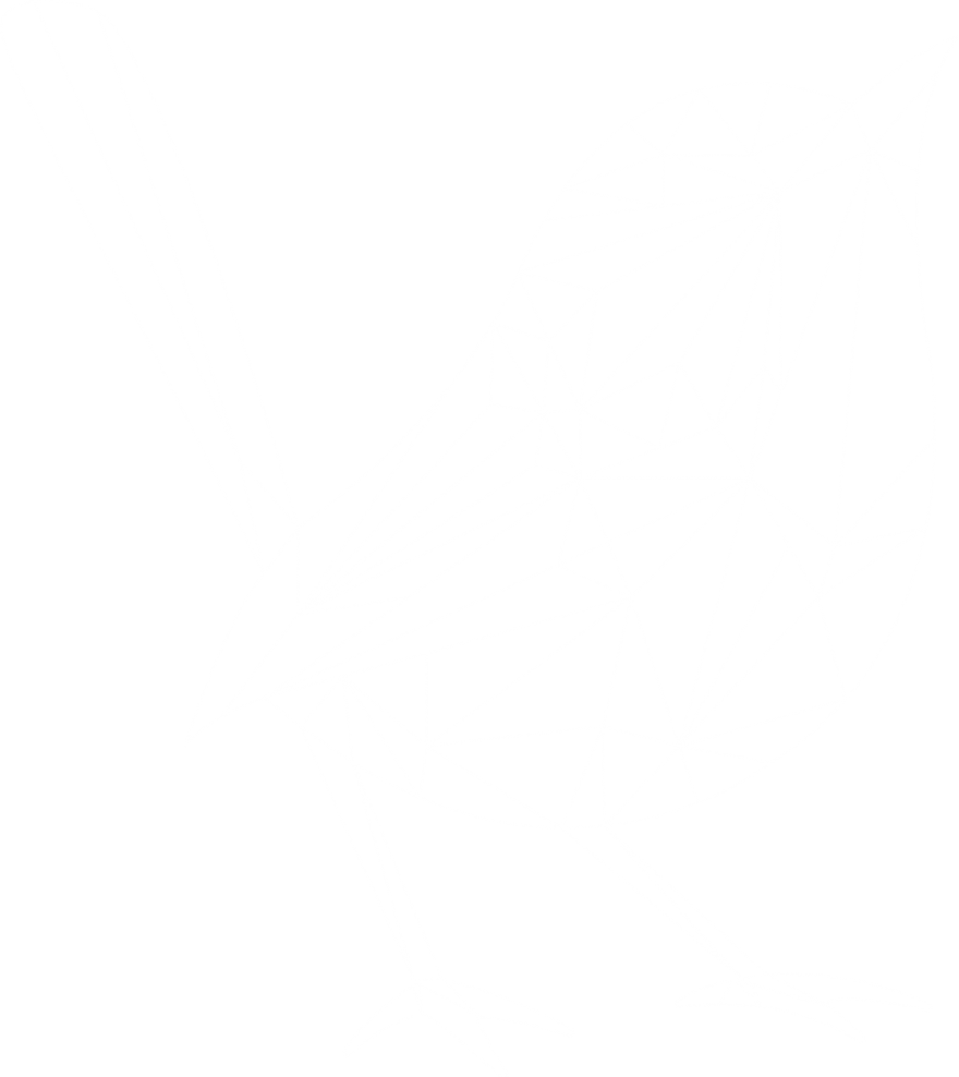 Wireframe of Blue Wren's polywren logo