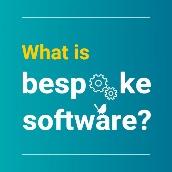 What is bespoke software? by Blue Wren